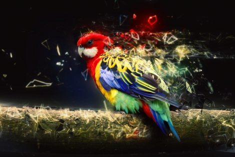 Parrot on the branch, abstract animal concept